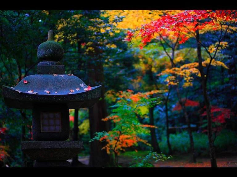Saimyou-ji temple, Shiga prefecture.