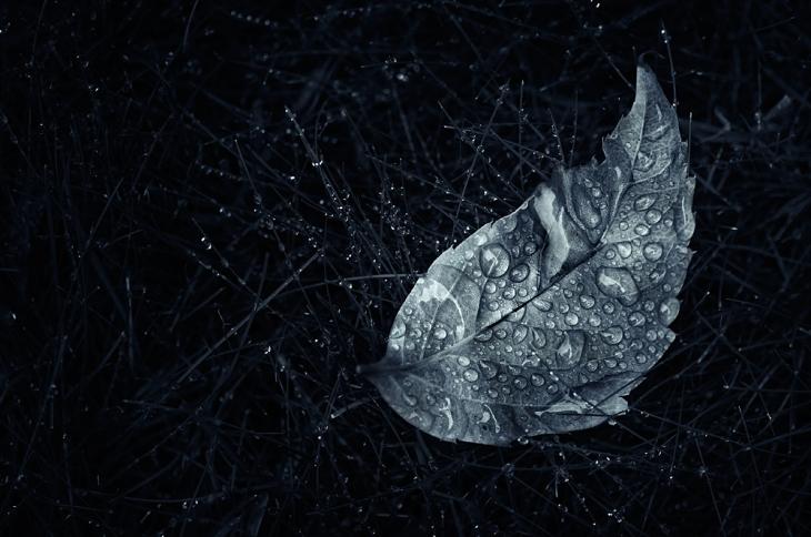 Vuelo Nocturno by MikkoLagerstedt-XIII