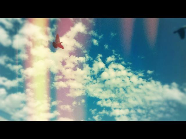 birds.clouds