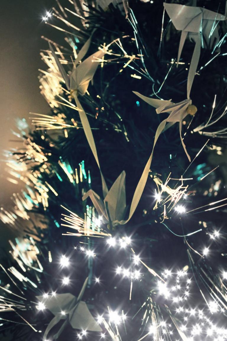 el espiritu de la navidad (1)