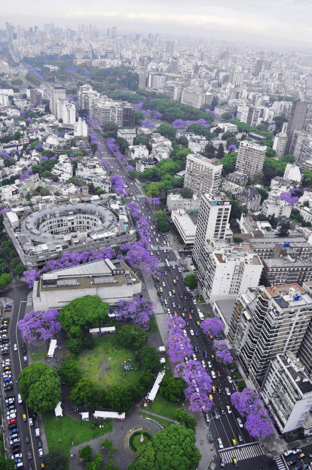 Springtime in Buenos Aires! Foto Ph Tijuanas