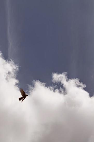 .cómo mirar el cielo