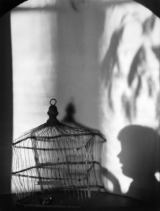 .Birdcage and Shadows, 1921