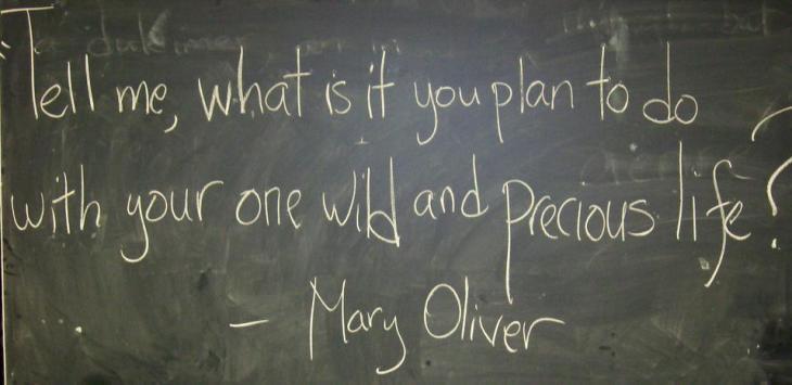 american poet quote