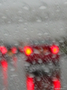 .el canto de la lluvia