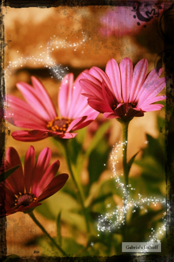 .como una flor cuando respira despacio
