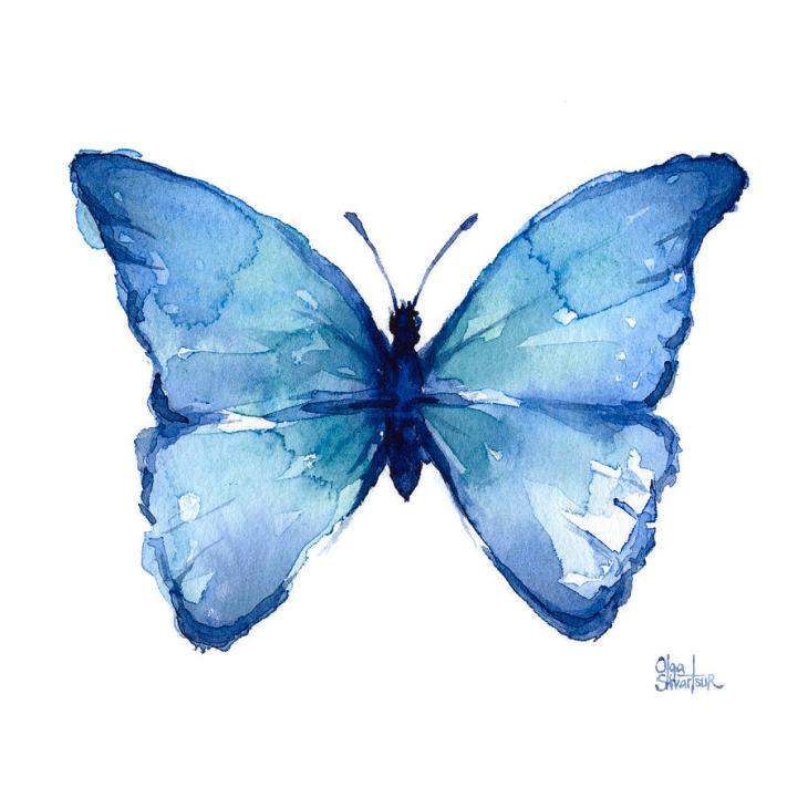 blue-butterfly-watercolor-olga-shvartsur