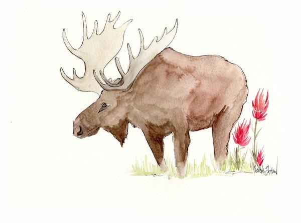Watercolor_Moose