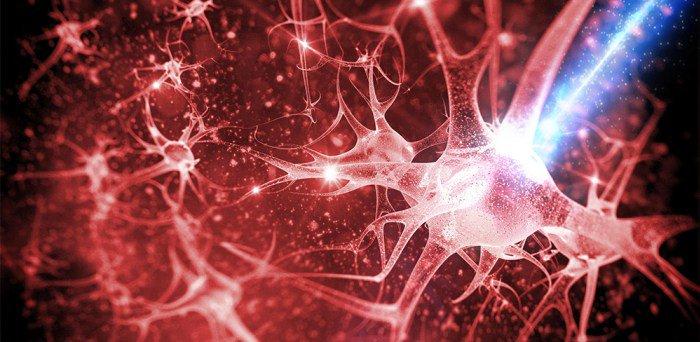 neurona_luz
