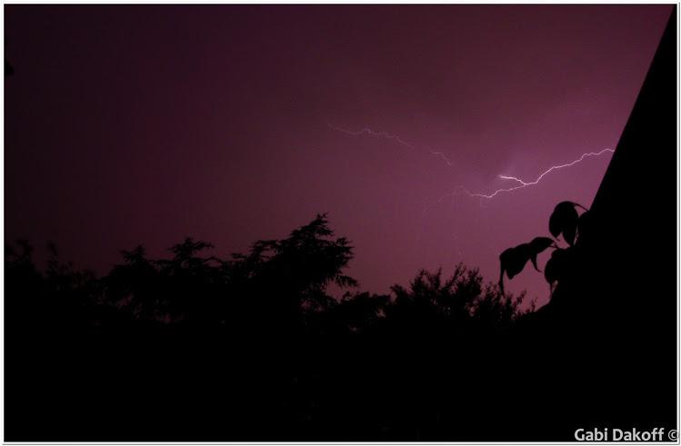 .la tormenta (2)