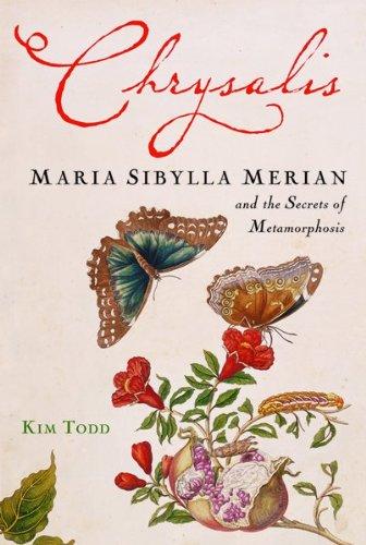 chrusalis-maria-sibylla-merian-secrets-of-metamorphosis-kim-todd
