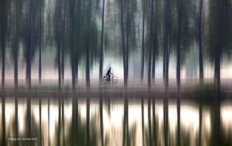 Chen MingFat, Fat-Hong Kong-PDI Altered Reality-Cycling and Trees.jpg