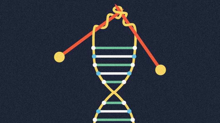 imagen-post-telomeros-v2.jpg