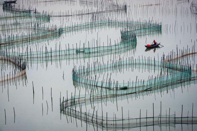 Zay Yar Lin.jpg
