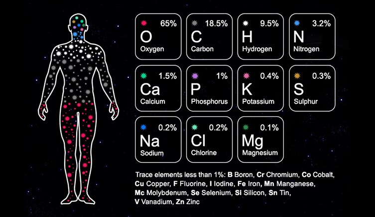 stardust-infographic-two-column.jpg.thumb.768.768.png.jpg