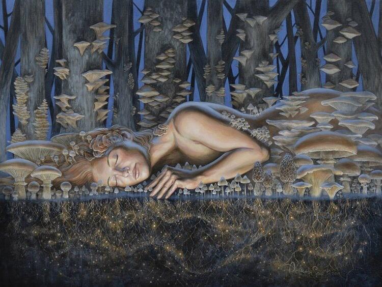 Mycelium Dreaming